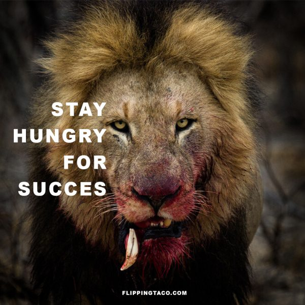 stay hungry for succes